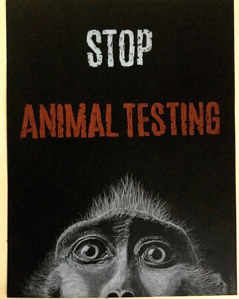 Stop Animal Testing, Buntstiftzeichnung/Papier, 65cm x 50cm