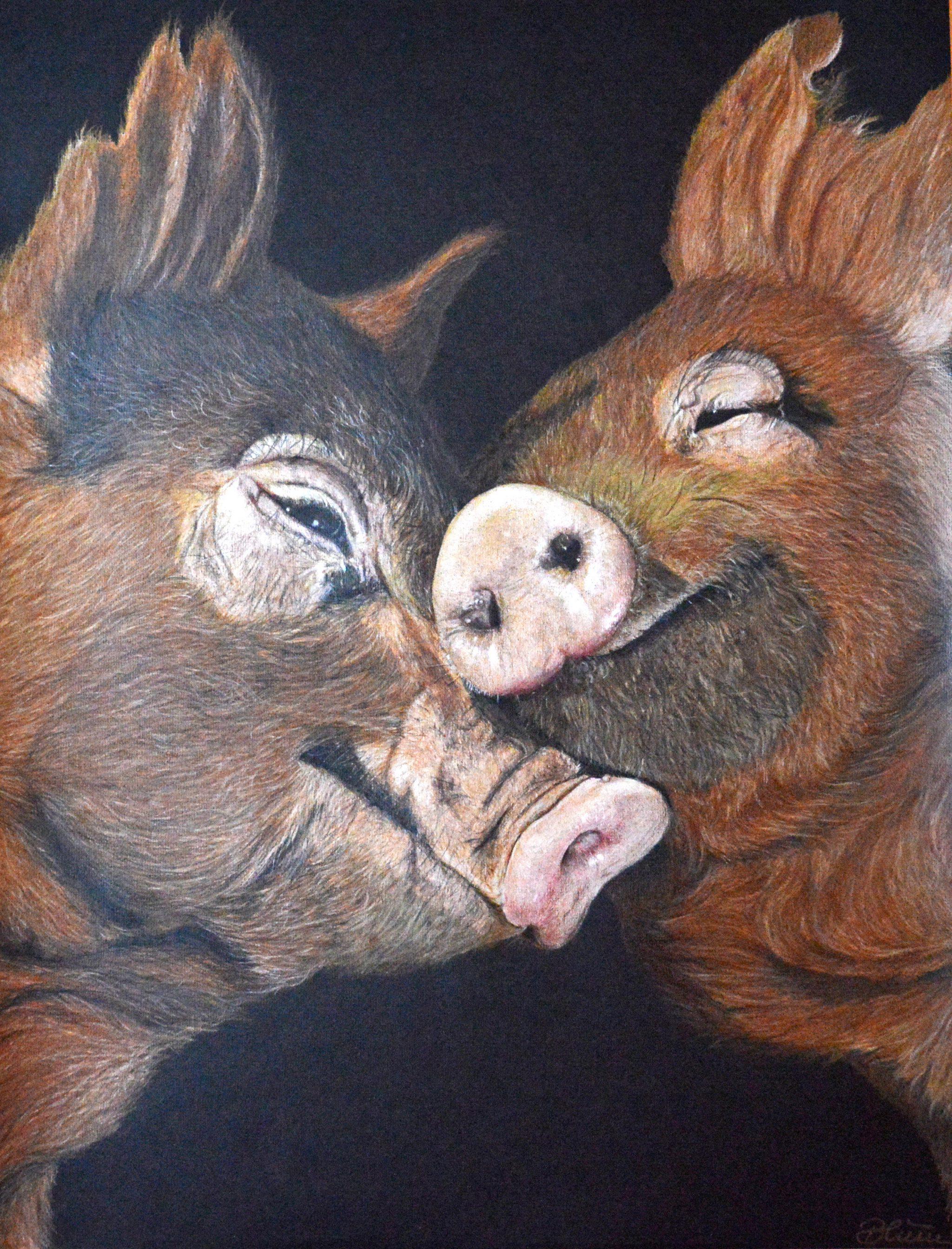 Animal Love Serie, Zeichnung Buntstifte/Papier, 65cm x 50cm